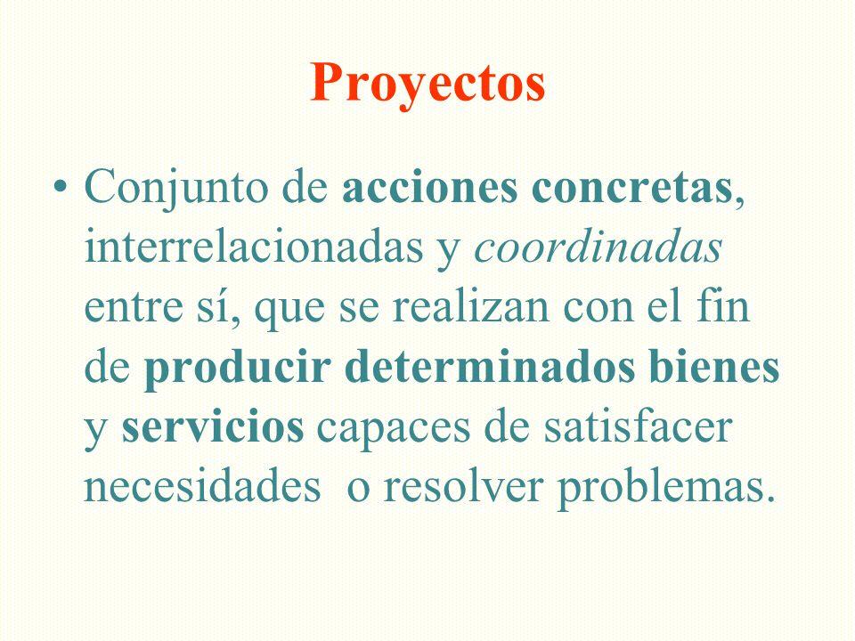 Proyectos Conjunto de acciones concretas, interrelacionadas y coordinadas entre sí, que se realizan con el fin de producir determinados bienes y servi