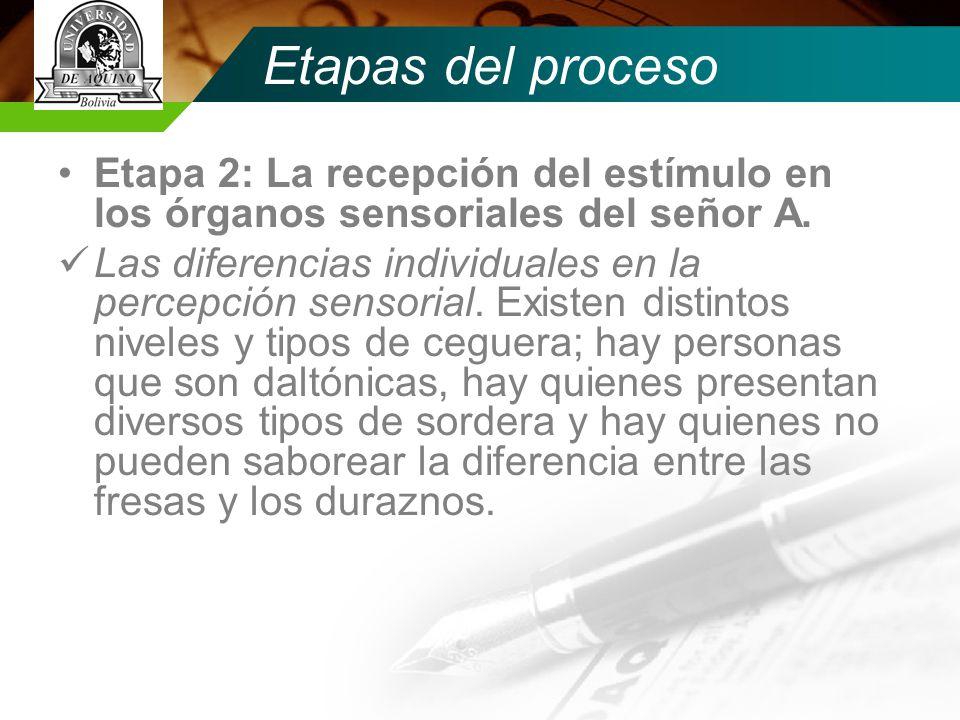 Etapas del proceso Etapa 2: La recepción del estímulo en los órganos sensoriales del señor A.