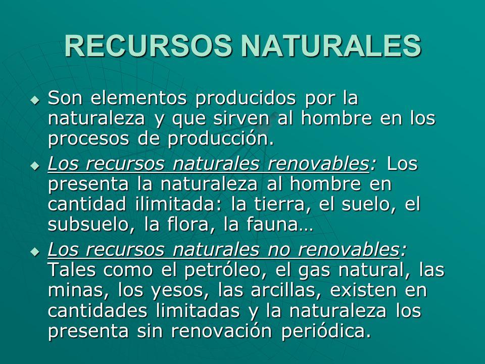 RECURSOS NATURALES Son elementos producidos por la naturaleza y que sirven al hombre en los procesos de producción. Son elementos producidos por la na
