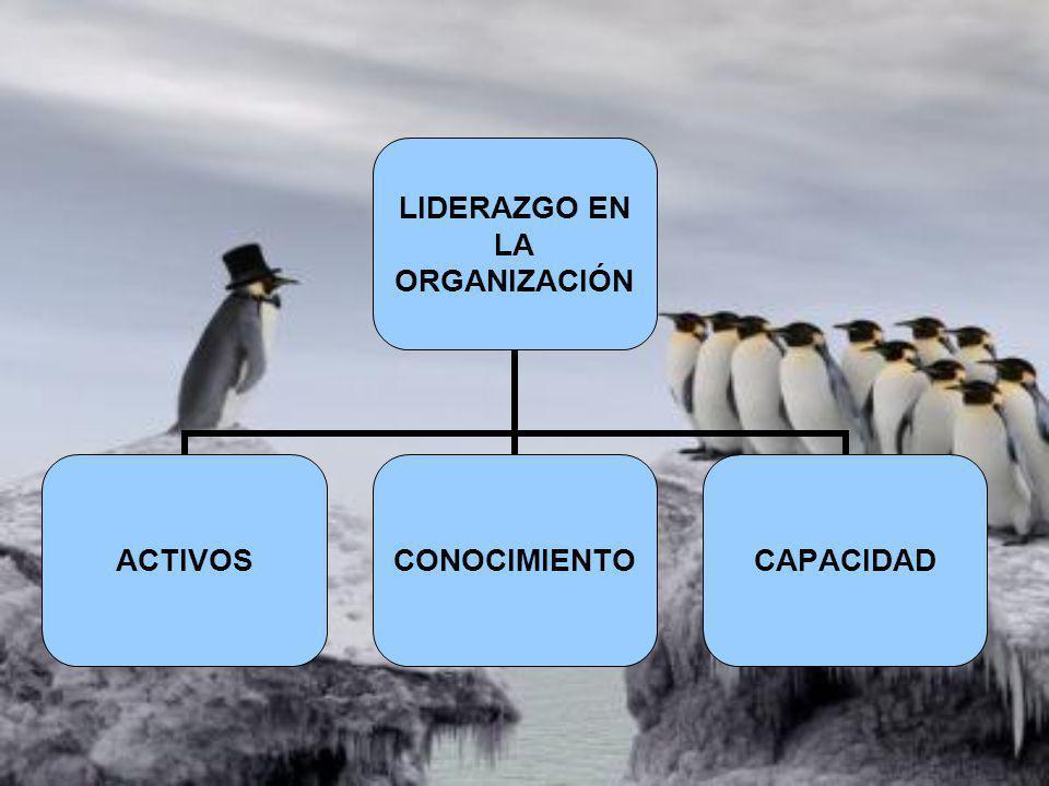 LIDERAZGO EN LA ORGANIZACIÓN ACTIVOSCONOCIMIENTOCAPACIDAD