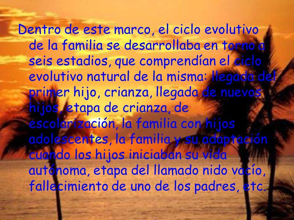 Dentro de este marco, el ciclo evolutivo de la familia se desarrollaba en torno a seis estadios, que comprendían el ciclo evolutivo natural de la mism