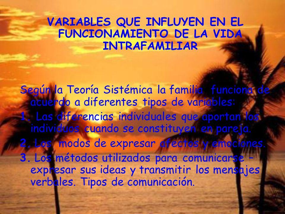 VARIABLES QUE INFLUYEN EN EL FUNCIONAMIENTO DE LA VIDA INTRAFAMILIAR Según la Teoría Sistémica la familia funciona de acuerdo a diferentes tipos de va