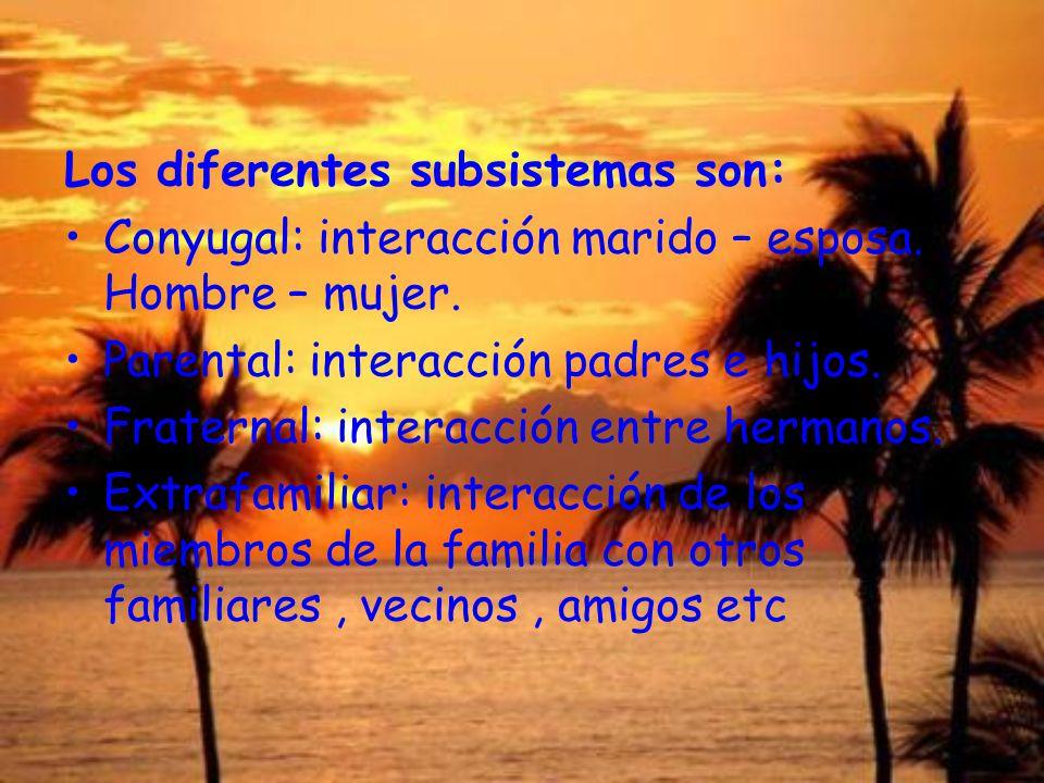 Los diferentes subsistemas son: Conyugal: interacción marido – esposa. Hombre – mujer. Parental: interacción padres e hijos. Fraternal: interacción en