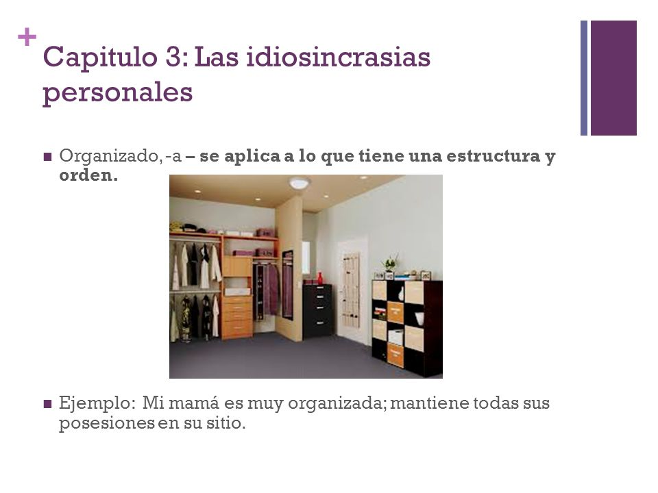 + Capitulo 3: Las idiosincrasias personales Organizado, -a – se aplica a lo que tiene una estructura y orden. Ejemplo: Mi mamá es muy organizada; mant