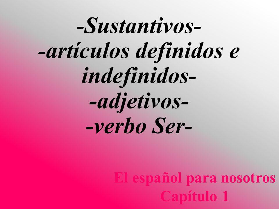 -Sustantivos- -artículos definidos e indefinidos- -adjetivos- -verbo Ser- El español para nosotros Capítulo 1