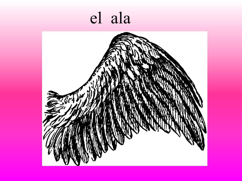 alael