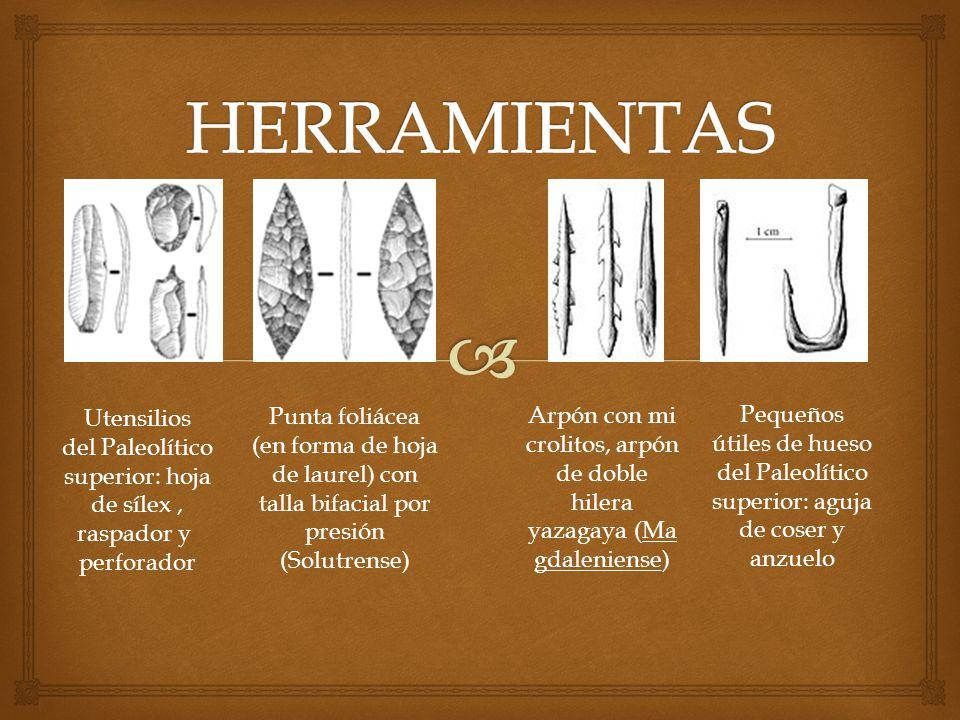 Utensilios del Paleolítico superior: hoja de sílex, raspador y perforador Punta foliácea (en forma de hoja de laurel) con talla bifacial por presión (