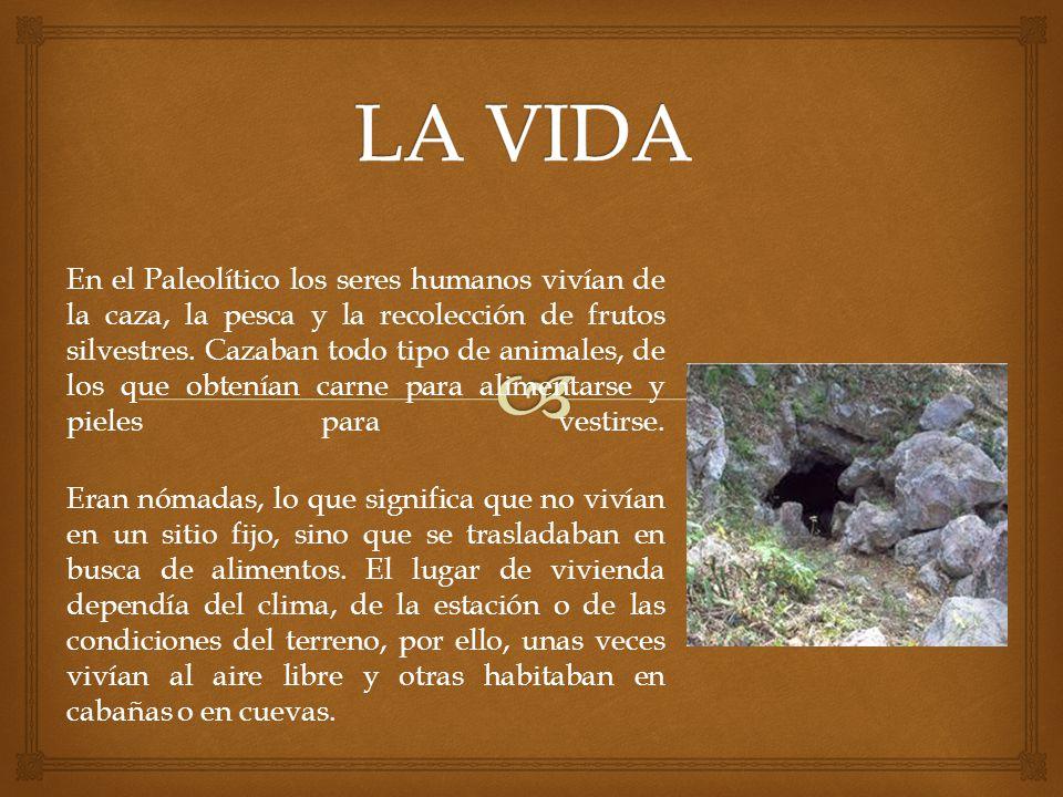 En el Paleolítico los seres humanos vivían de la caza, la pesca y la recolección de frutos silvestres. Cazaban todo tipo de animales, de los que obten