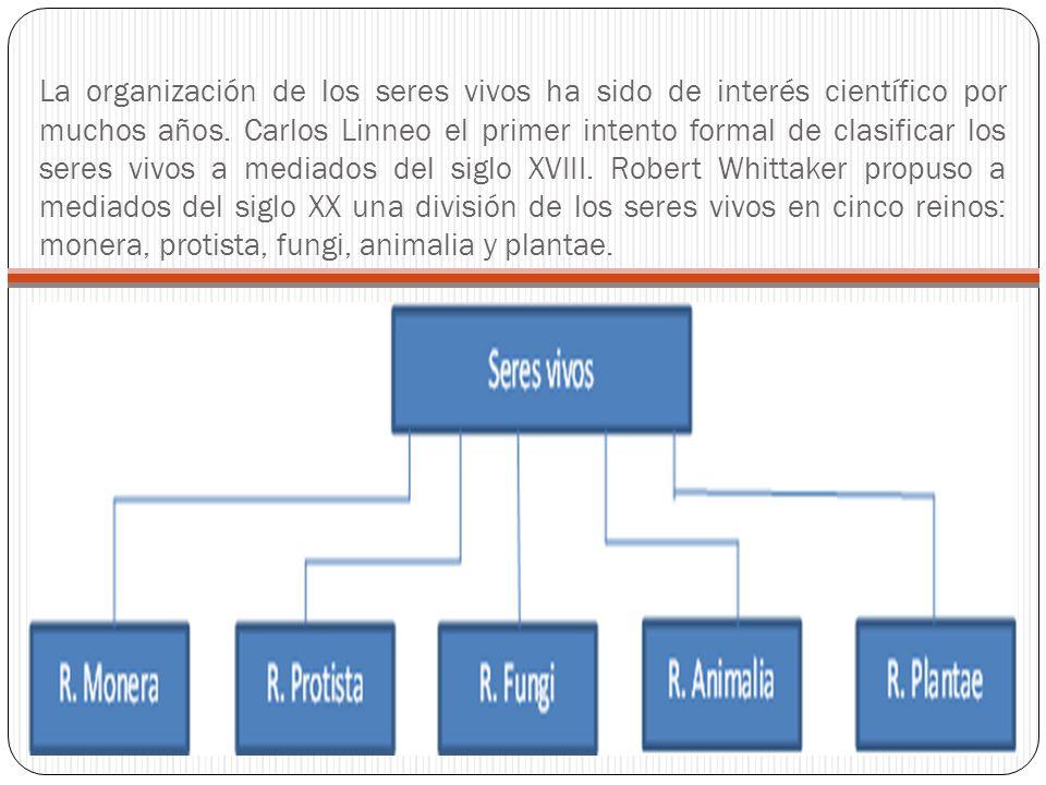 La organización de los seres vivos ha sido de interés científico por muchos años. Carlos Linneo el primer intento formal de clasificar los seres vivos