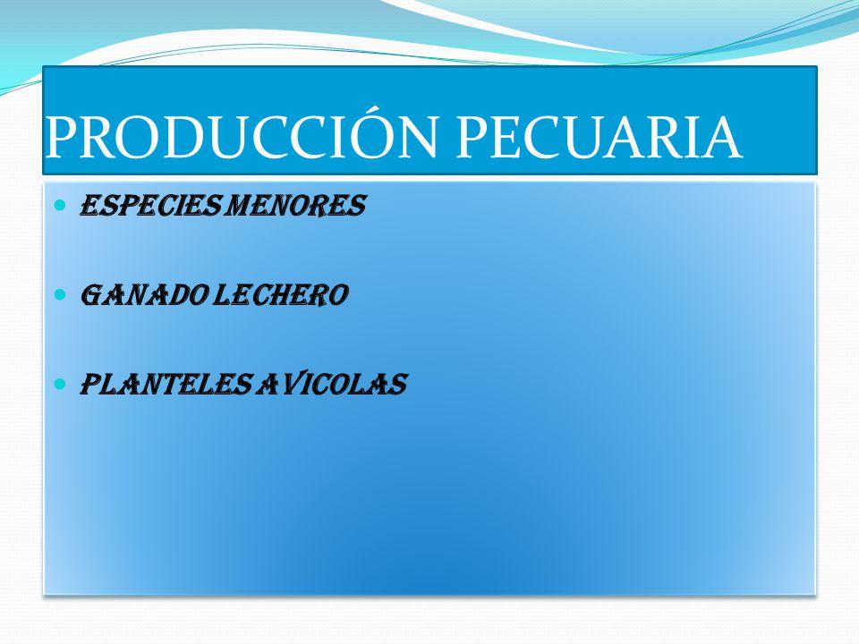 PRODUCCIÓN PECUARIA ESPECIES MENORES GANADO LECHERO PLANTELES AVICOLAS ESPECIES MENORES GANADO LECHERO PLANTELES AVICOLAS
