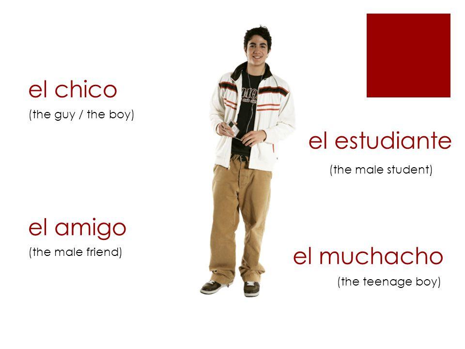la chica (the girl) la amiga (the female friend) (the female student) la muchacha la estudiante (the teenage girl)