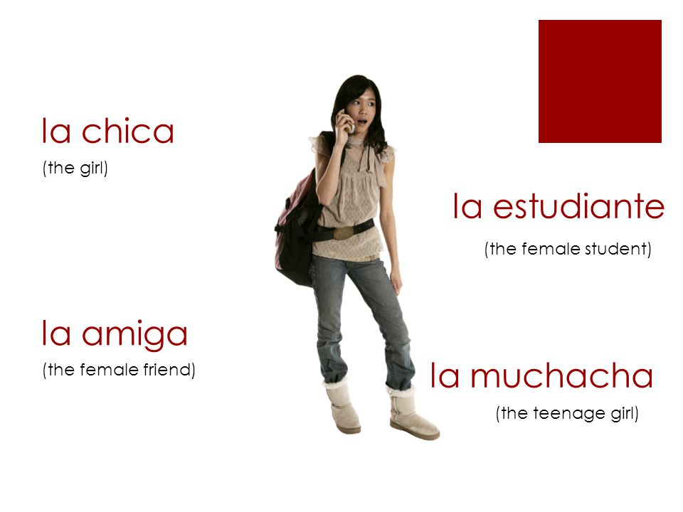 la chica (the girl) la amiga (the female friend) (the female student) la muchacha la estudiante (the teenage girl)