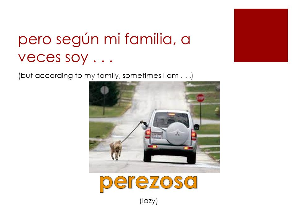 pero según mi familia, a veces soy... (lazy) (but according to my family, sometimes I am...)