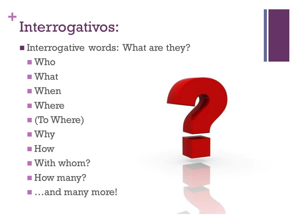 + Interrogativos: Interrogative words: What are they? Who What When Where (To Where) Why How With whom? How many? …and many more!