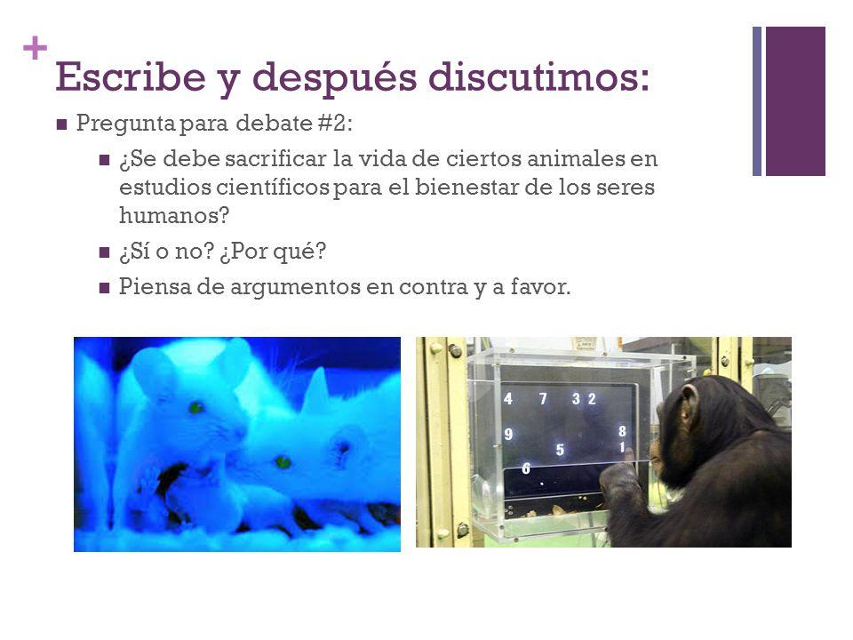 + Escribe y después discutimos: Pregunta para debate #2: ¿Se debe sacrificar la vida de ciertos animales en estudios científicos para el bienestar de los seres humanos.