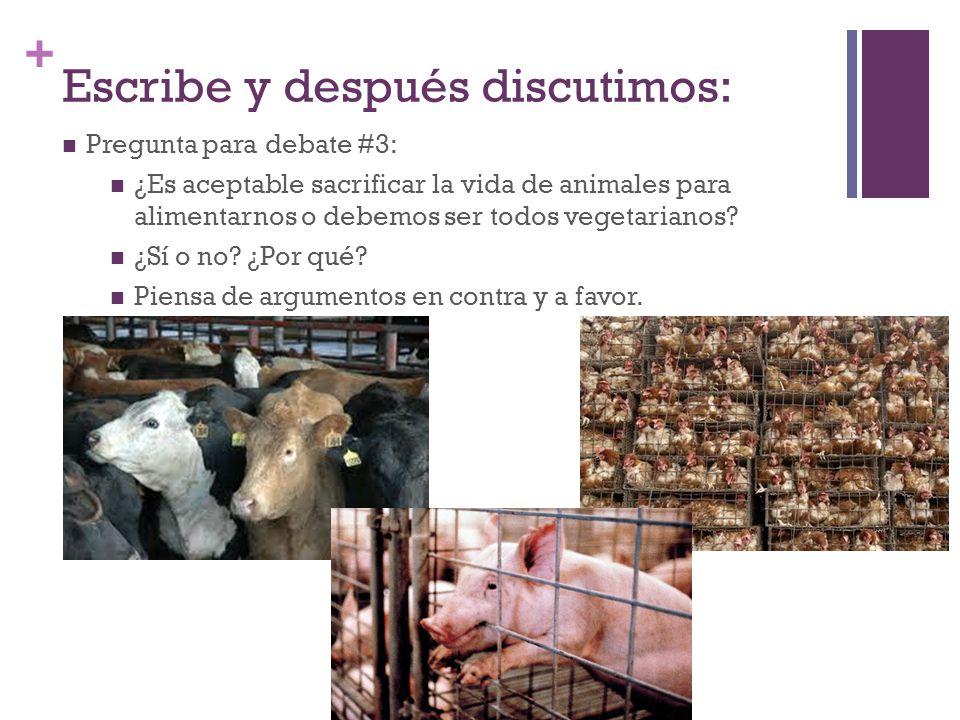 + Escribe y después discutimos: Pregunta para debate #3: ¿Es aceptable sacrificar la vida de animales para alimentarnos o debemos ser todos vegetarianos.