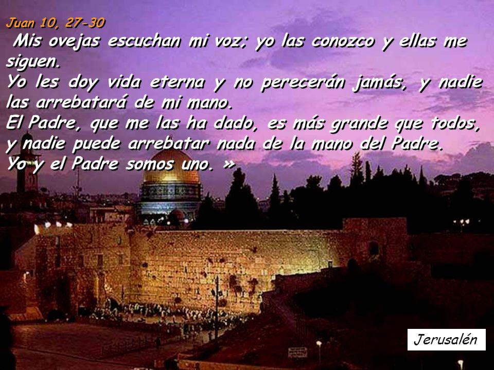 Jerusalén Juan 10, 27-30 Mis ovejas escuchan mi voz; yo las conozco y ellas me siguen.