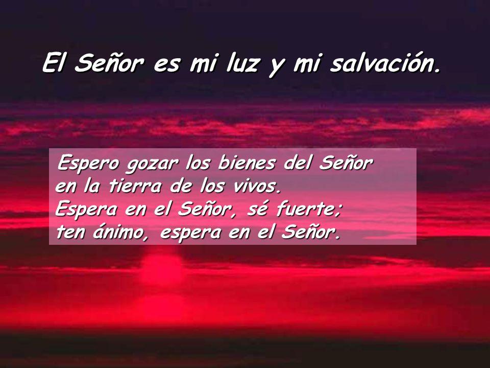 El Señor es mi luz y mi salvación.Espero gozar los bienes del Señor en la tierra de los vivos.