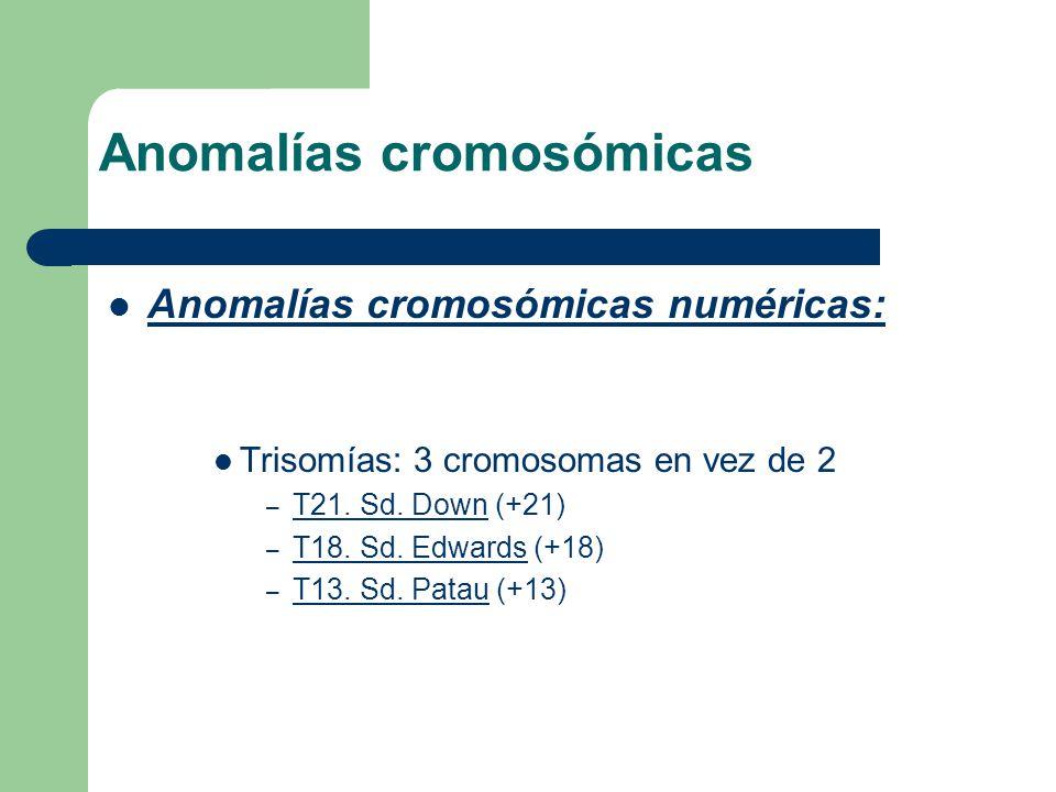 Anomalías cromosómicas numéricas: Trisomías: 3 cromosomas en vez de 2 – T21. Sd. Down (+21) – T18. Sd. Edwards (+18) – T13. Sd. Patau (+13) Anomalías