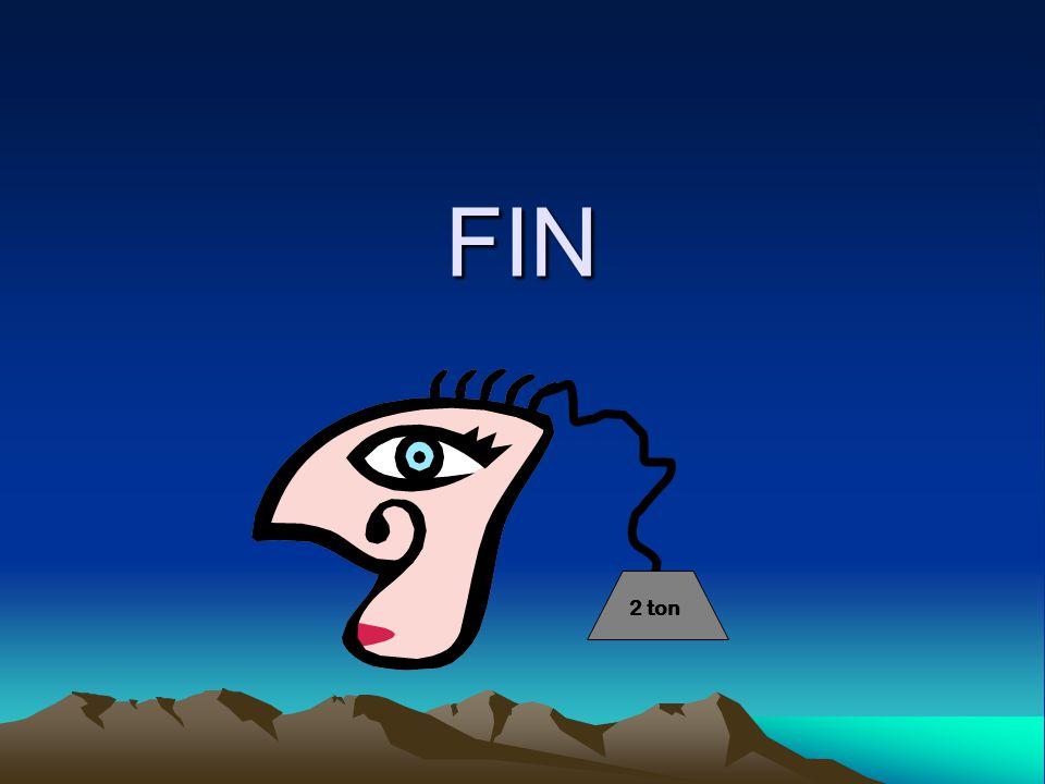 FIN 2 ton