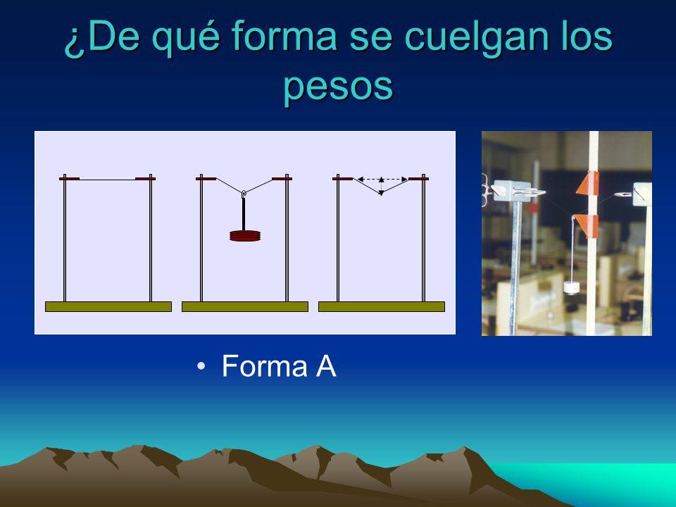 Forma B Forma C