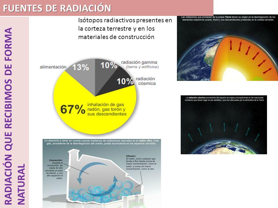RADIACIÓN QUE RECIBIMOS DE FORMA NATURAL Isótopos radiactivos presentes en la corteza terrestre y en los materiales de construcción RADÓN.- EL gas radón procede del uranio que se encuentra en la tierra de forma natural.
