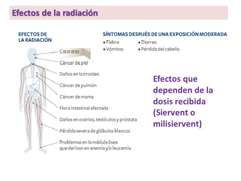 Efectos de la radiación Efectos que dependen de la dosis recibida (Siervent o milisiervent)