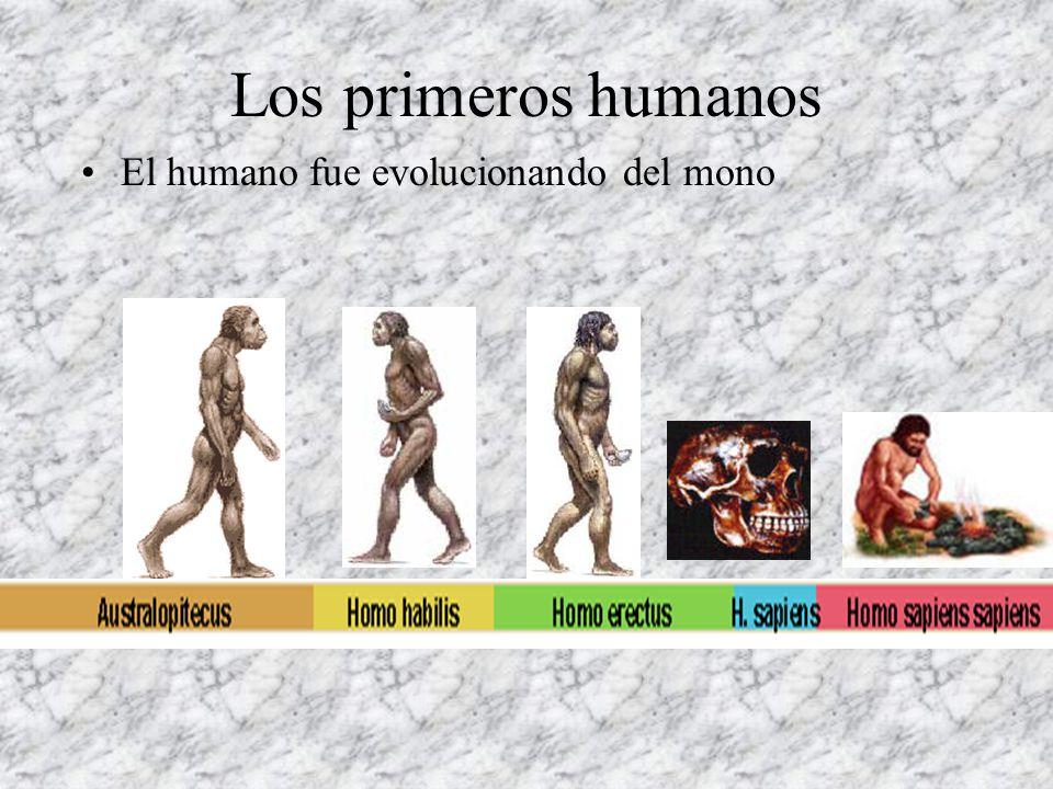 Los primeros seres vivos Estos fueron los dinosaurios Hubo tres períodos: Cretácico,Jurásico y Triásico