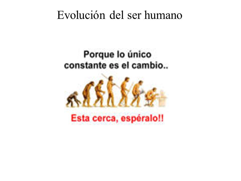 Los primeros humanos El humano fue evolucionando del mono