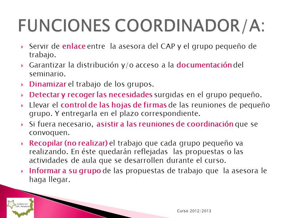 Servir de enlace entre la asesora del CAP y el grupo pequeño de trabajo. Garantizar la distribución y/o acceso a la documentación del seminario. Dinam