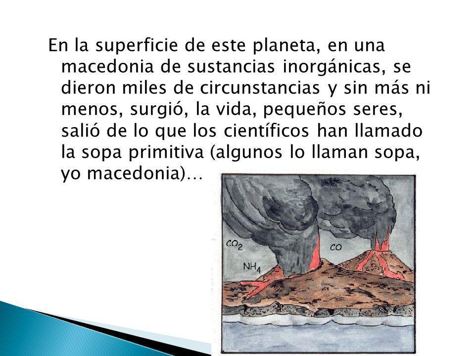Cuando a nosotros nos pica algo nos rascamos ¿no?, pues la Tierra igual, y eso produce los terremotos, más o menos.