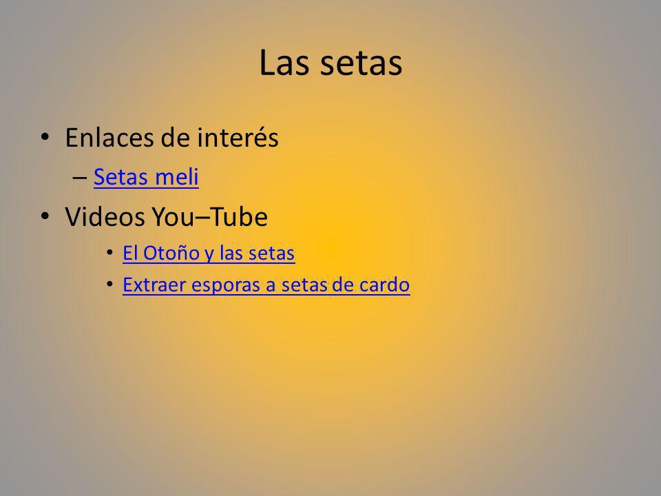 Las setas Enlaces de interés – Setas meli Setas meli Videos You–Tube El Otoño y las setas Extraer esporas a setas de cardo