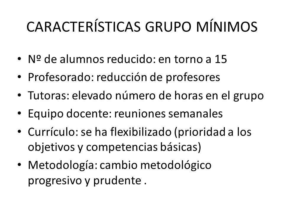 CARACTERÍSTICAS GRUPO MÍNIMOS Nº de alumnos reducido: en torno a 15 Profesorado: reducción de profesores Tutoras: elevado número de horas en el grupo