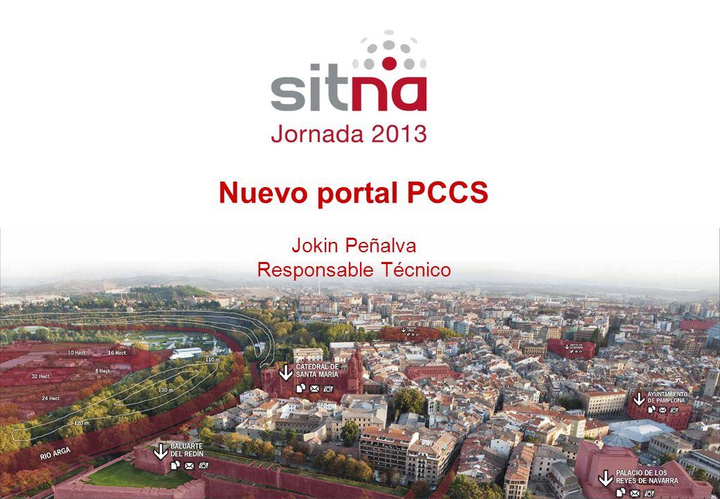 Ponente Cargo Nuevo portal PCCS Jokin Peñalva Responsable Técnico