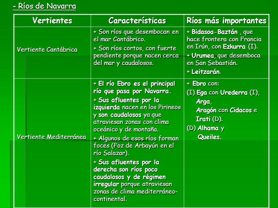 - Ríos de Navarra VertientesCaracterísticas Ríos más importantes Vertiente Cantábrica + Son ríos que desembocan en el mar Cantábrico. + Son ríos corto