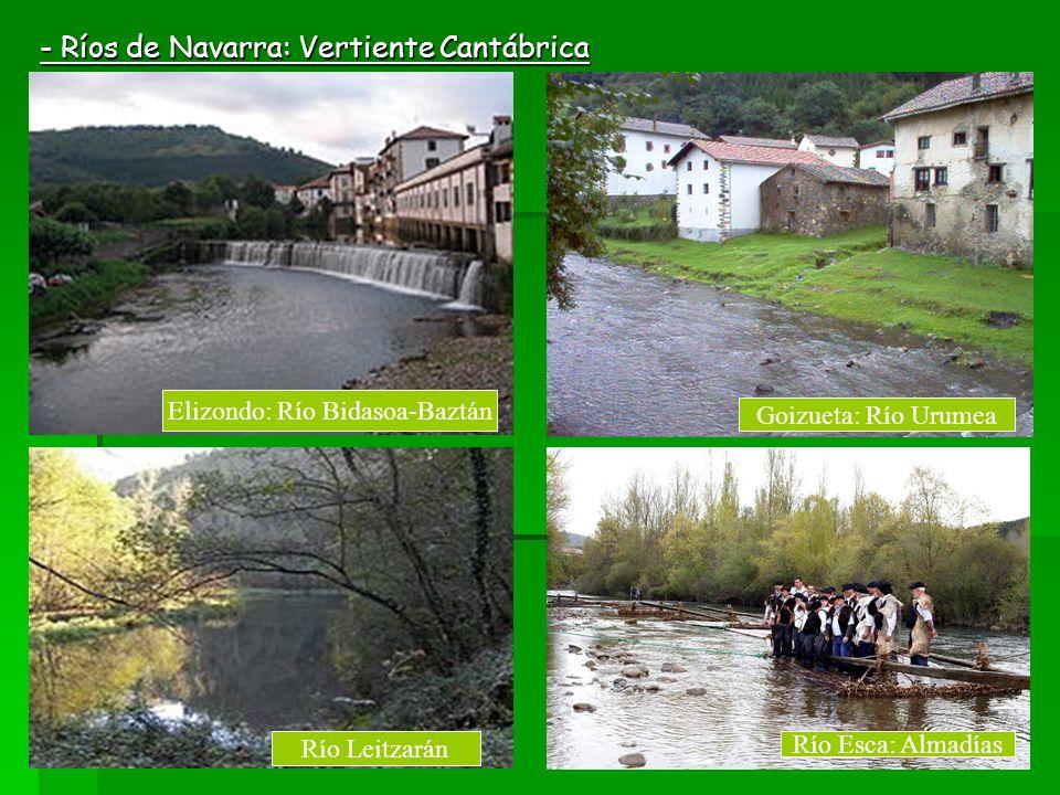- Ríos de Navarra: Vertiente Cantábrica Elizondo: Río Bidasoa-Baztán Goizueta: Río Urumea Río Leitzarán Río Esca: Almadías