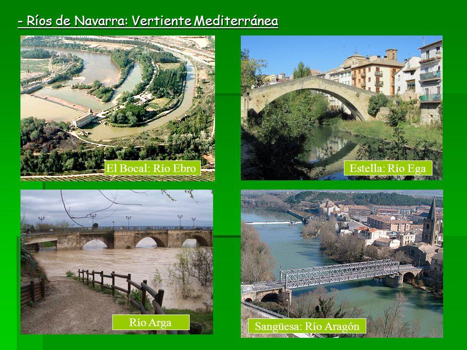 - Ríos de Navarra: Vertiente Mediterránea El Bocal: Río EbroEstella: Río Ega Río Arga Sangüesa: Río Aragón