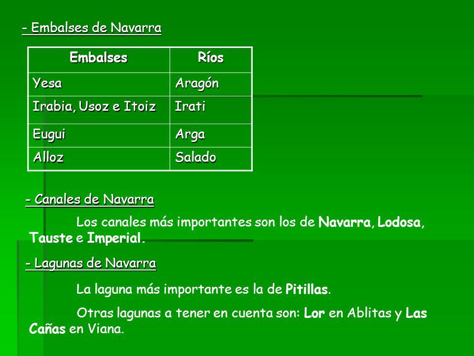 - Embalses de Navarra EmbalsesRíos YesaAragón Irabia, Usoz e Itoiz Irati EuguiArga AllozSalado - Canales de Navarra Los canales más importantes son lo