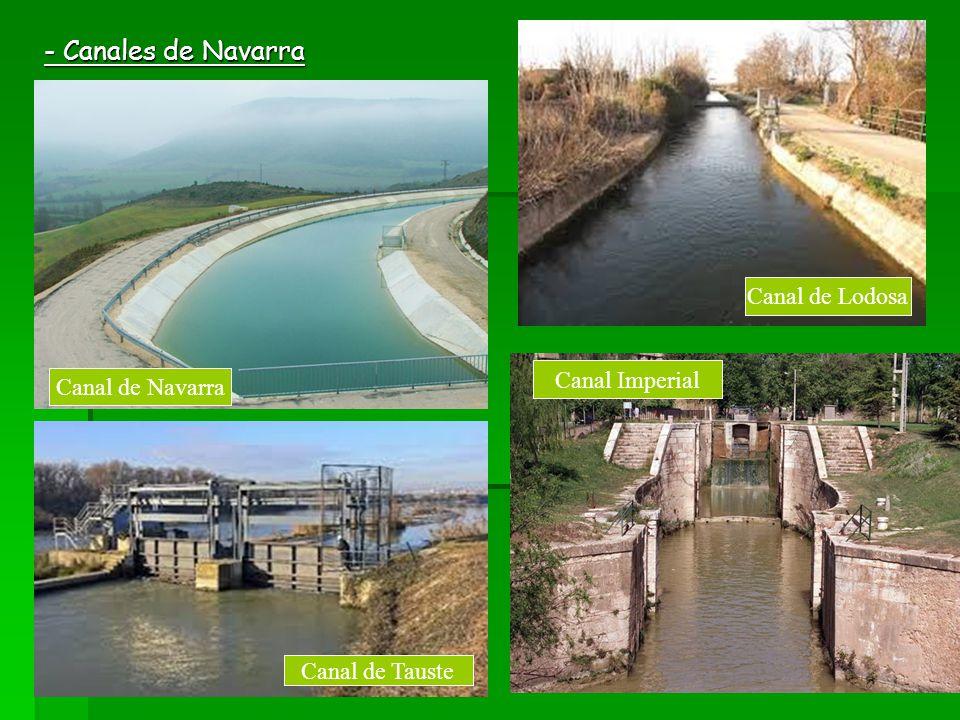 - Canales de Navarra Canal de Lodosa Canal de Navarra Canal de Tauste Canal Imperial