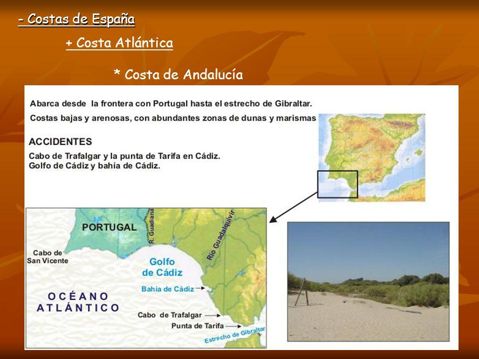 - Costas de España + Costa Atlántica * Costa de Andalucía Golfo de Cádiz Bahía de Cádiz Punta de Tarifa