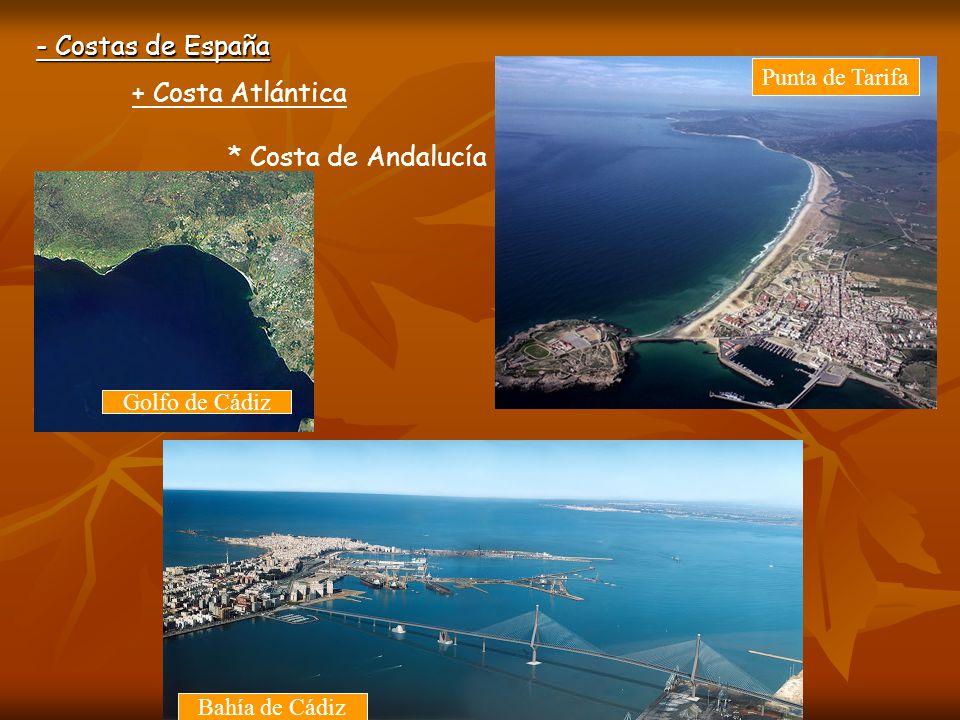 - Costas de España + Costa Atlántica * Costa de Canarias Tenerife y Gran Canaria tienen costas rocosas al norte y arenosas al sur.