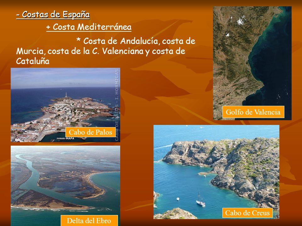 - Costas de España Alternan costas altas y rocosas con costas bajas y arenosas.