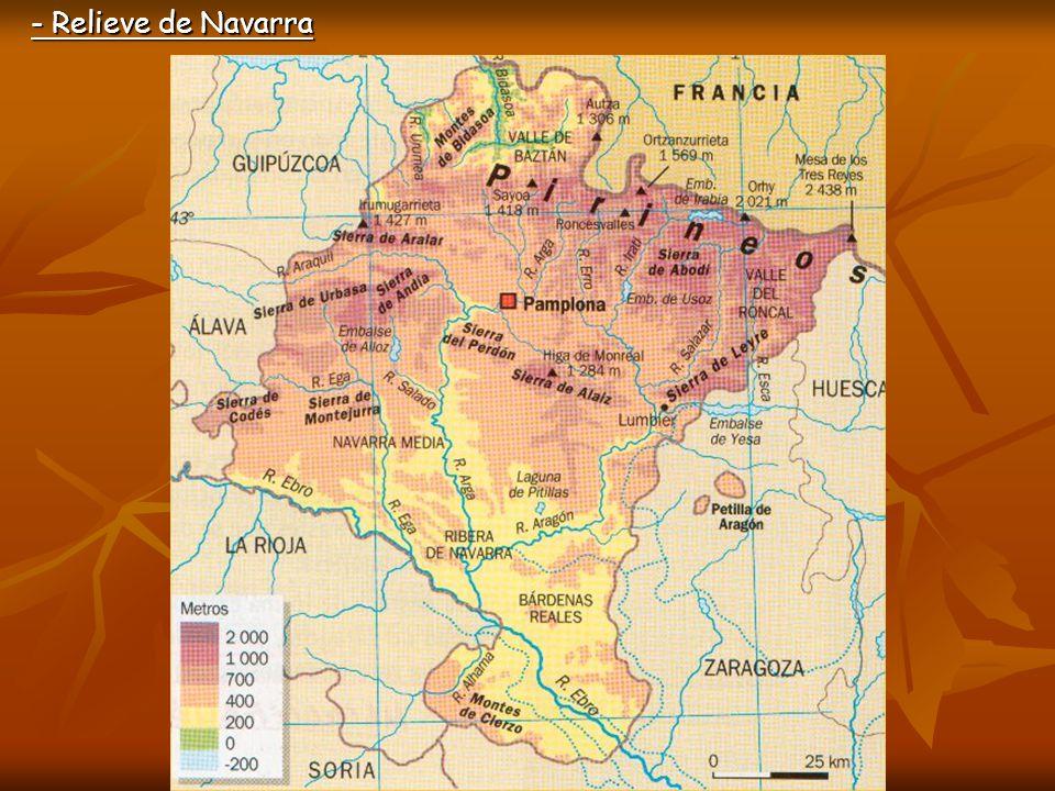 ZonaSituaciónRelieve Montes importantes Montaña Norte y oeste de Navarra Pirineos Valles transversales Montes Vascos Mesa de Tres Reyes Pico de Ori SalazarRoncal Baztán al noroeste AralarUrbasaAndíaCodés Zona Media Centro de Navarra Sierras de este a oeste CuencasLeyreIzcoAlaiz El Perdón Lumbier-Aoiz (Irati) Pamplona (Arga) Ribera Sur de Navarra, formando parte de la depresión del Ebro Zona más llana de la Comunidad Montes del Cierzo Al este de la Ribera, las Bardenas Reales