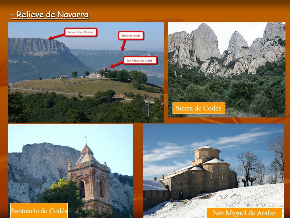 - Relieve de Navarra Sierra de Leyre Sierra del Perdón Cuenca de PamplonaMonasterio de Leyre
