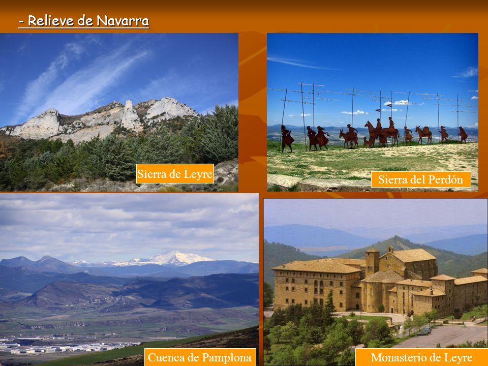 - Relieve de Navarra Montes del Cierzo Bardenas Reales: Castiltierra Tudela Río Ebro por Tudela