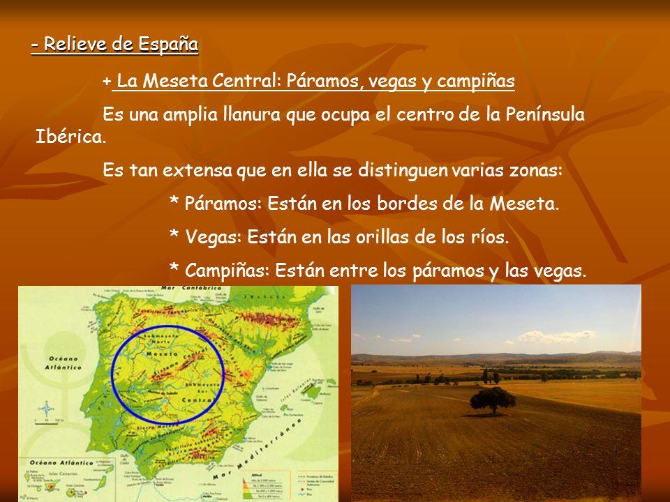 - Relieve de España + Sistemas de la Meseta Central: Sistema Central y Montes de Toledo En el Sistema Central destacan las sierras de Gata, Gredos y Guadarrama.