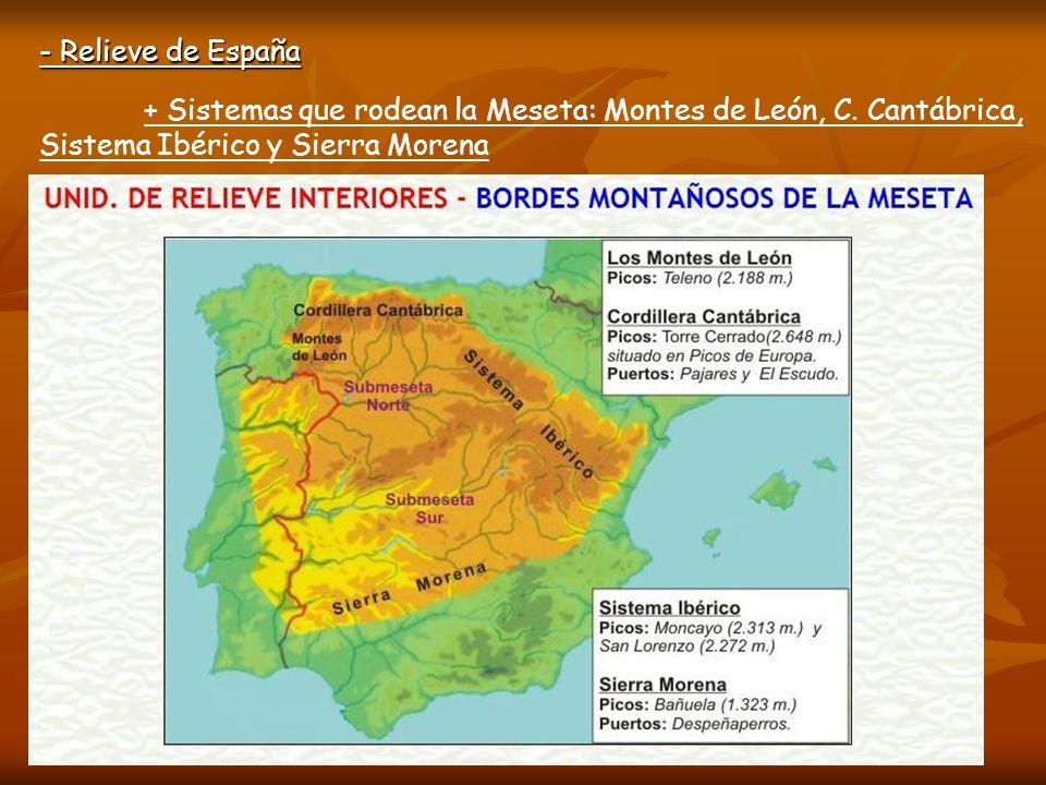 - Relieve de España + Sistemas que rodean la Meseta: Montes de León, C.