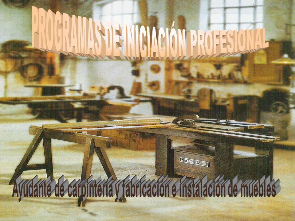 Los Programas de Iniciación Profesional se sitúan en el marco de las enseñanzas post- obligatorias de carácter no reglado.