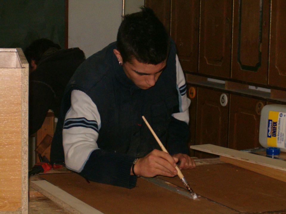 MÓDULO 1MÓDULO2MÓDULO3MÓDULO4 MÓDUL O 5 ÁREA DE FORMACIÓN PROFESIONAL ESPECÍFICA Operaciones básicas de carpintería Mecanizado básico de la madera Pulido de la madera ÁREA BÁSICA El número y la cantidad.