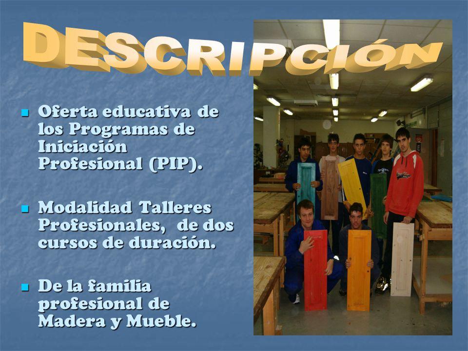 Oferta educativa de los Programas de Iniciación Profesional (PIP).